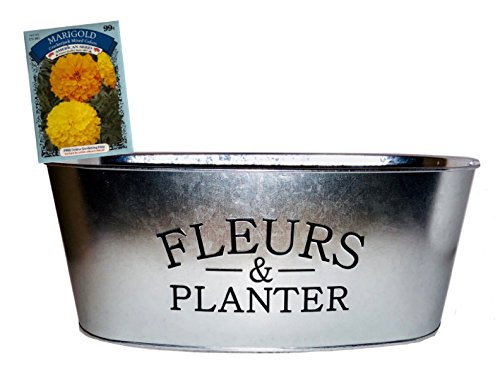 French Planter - Decorative French Farmhouse Style Flower Pail | Fleurs and Planter Printed on Galvanized Metal Finish Oval Plant Pot | Indoor Table Centerpiece Container Or Outdoor Garden Tub with Bonus Flower Seeds