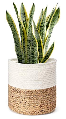 Cotton Rope Plant Basket with Water Hyacinth Modern Indoor Planter Up to 10 Inch Pot Woven Storage Organizer with Handles Home Decor, 11