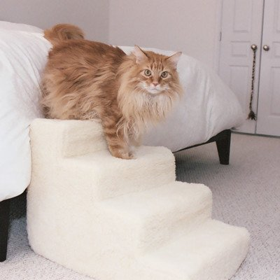 Foam 4 Step Pet Stair by PetStairz