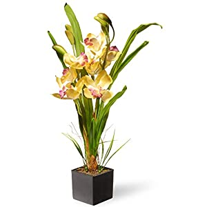 "CC Christmas Decor 17"" Potted Artificial Yellow Orchid Flowers 6"