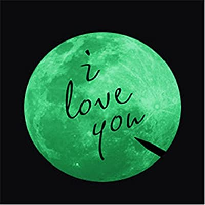 WINOMO Glow in the Dark Moon with Quote I Love You Wall Sticker Decals Dia 11cm