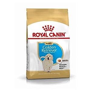 Royal Canin Golden Retriver Junior, 3 kg