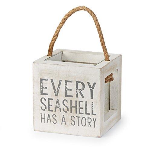 Mud Pie Mango Wood Shell Treasure Box Every Seashell
