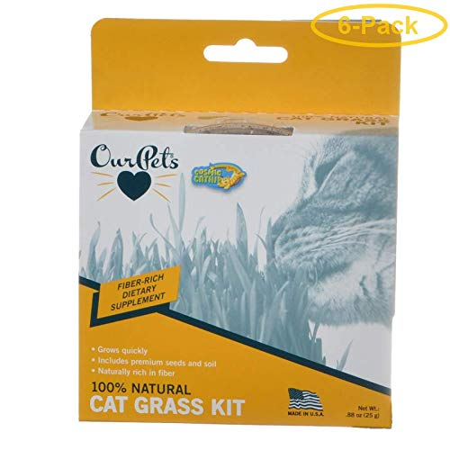 OurPets Cosmic Catnip Kitty Cat Grass 0.88 oz - Pack of 6 by Cosmic Pet