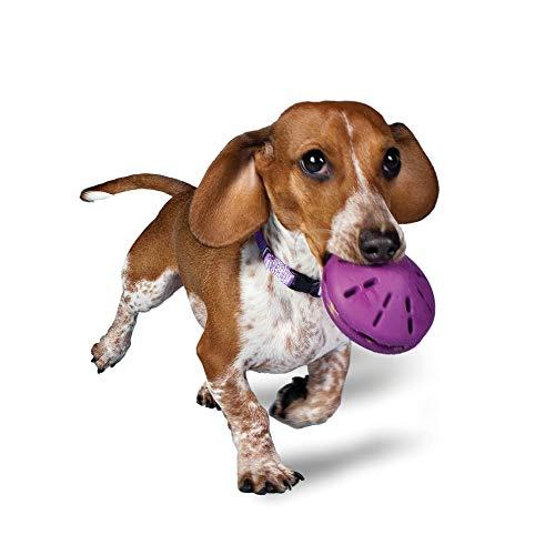 PetSafe Busy Buddy Twist