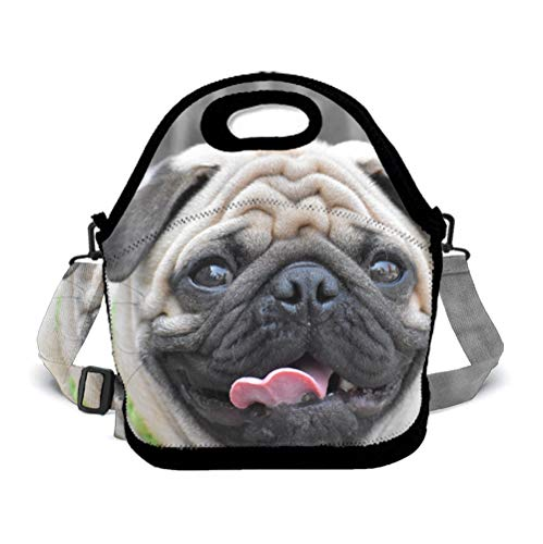 Eco-Friendly Neoprene Lunch Bag - Pug Dog - Large Insulated Lunch Sack, Soft Cooler/Hot Bag for School/Beach/Picnic/Camping/BBQ