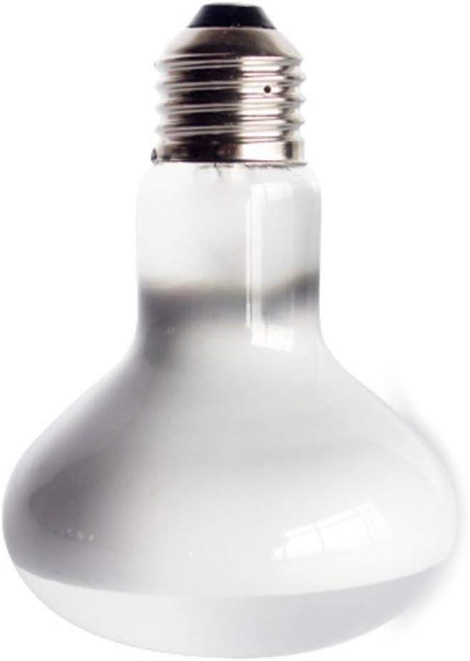 Formulaone 220V UVA+UVB Reptile Lamp Bulb Turtle Basking UV Light Bulbs Heating Lamp Amphibians Lizards Temperature Controller-White 75W