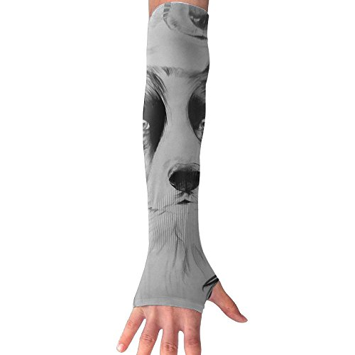 HBSUN FL Unisex Hand Painted Border Grazing And Golden Retriever Sketch Anti-UV Cuff Sunscreen Glove Outdoor Sport Riding Bicycles Half Refers Arm Sleeves by HBSUN FL