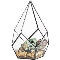 NCYP Modern Artistic Clear Glass Geometric Terrarium Four-Surfaces Diamond Succulent Fern Moss Air Plant Flower Pot Office Desktop Box Window Display Planter for Wedding Decoration