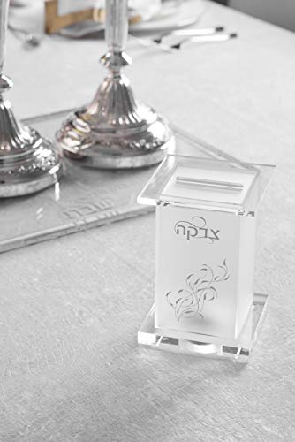 (Presented Touch Lucite Acrylic Tzedakah Box Design Frost Sliver)