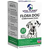 Vital Planet - Flora Dog Chewable - High Potency, Multi-Strain Probiotic Formula for Dogs (30 Chewable Tabs)