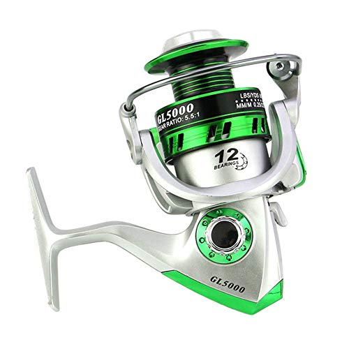FEDULK 2019 New Powerful Fishing Reels 5.5:1 10BB Spinning Ultra Smooth Reel for Saltwater or Freshwater(Silver, GL2000)