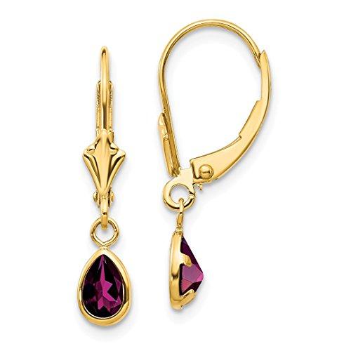 14k Yellow Gold 6x4mm Rhodolite Garnet/june Leverback Earrings Lever Back Drop Dangle Birthstone June Fine Jewelry For Women Gift Set