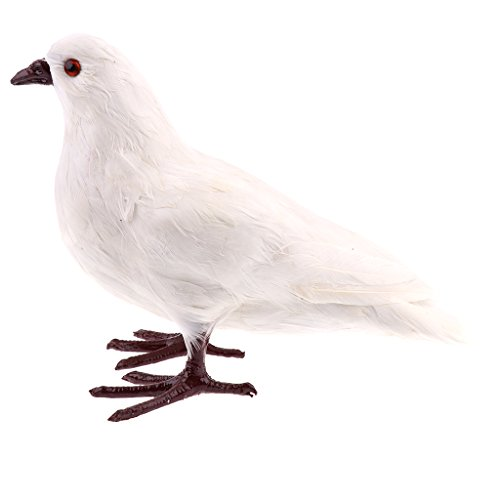 Nice Homyl Simulation Wild Zoo Pigeon Animal Model Toy Action Figures Home Decorative Handicraft hot sale