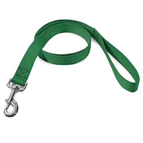 3/4in x 4ft Lead Dog Leash Green By Majestic Pet Products