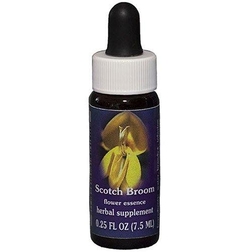 Flower Essence Services Essence, Scotch Broom, 0.25 Ounce ()