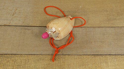 Nobilis Seashell Whistles, 2 Shell Whistles, Party Favor, Conch Horn