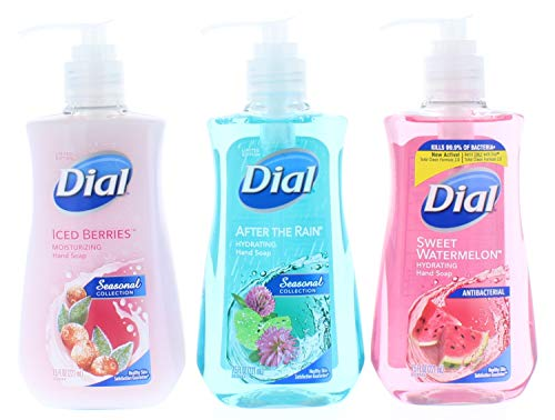 Dial Seasonal Collection Iced Berries, After The Rain, Sweet Watermelon Liquid Hand Soap 7.5 Fl. Oz (22.5 Fl. Oz Total) (Watermelon Cleaning Supplies)