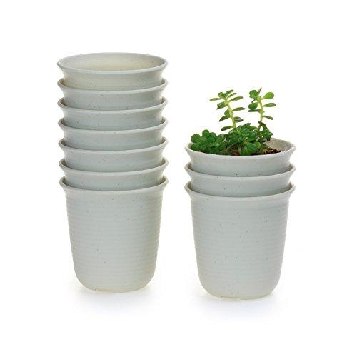 T4U 3 Inch Plastic Round succulent Plant Pot/Cactus Plant Pot Flower Pot/Container/Planter Marble white Package 1 Pack of 10