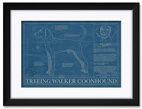 Treeing Walker Coonhound Professionally Framed & Matted Hand-Drawn Dog Blueprint by Robert Redding. Print Size: 13
