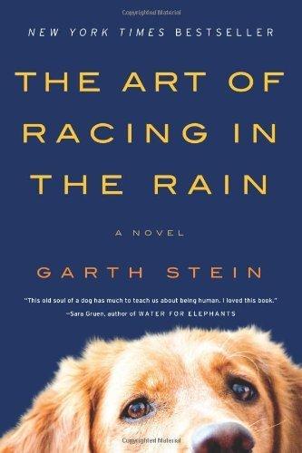The Art of Racing in the Rain ()