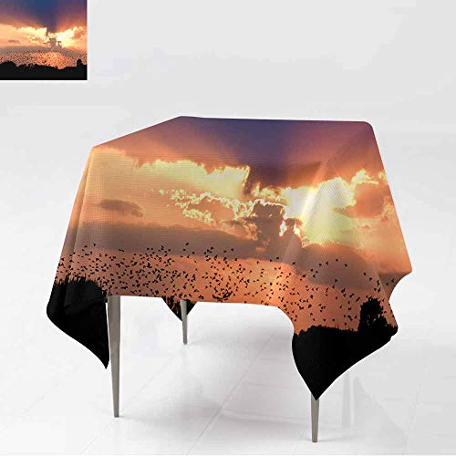 (AFGG Resistant Table Cover,Bird Swarm in Sunset,Resistant/Spill-Proof/Waterproof Table Cover,70x70 Inch)