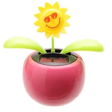a2d9dc59f PK Green Solar Powered Dancing Flower Plant Pot - Flip Flap Sunflower  (Pink)  Amazon.co.uk  Kitchen   Home