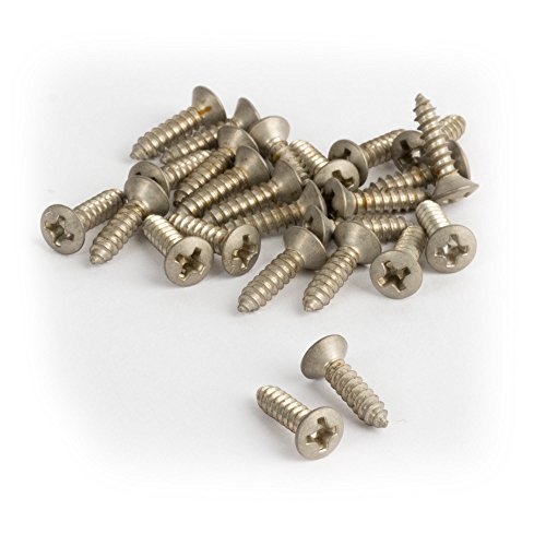 (Golden Age Pickguard Screws for Fender, Relic Nickel - 25 pack)