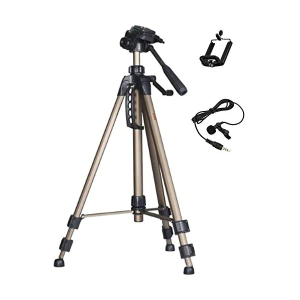RetinaPix Simpex 2400 Tripod Combo with Free Mobile Holder and Microphone