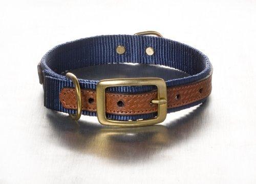 Woofwerks Cooper Overlay Collar, 1 by 22-Inch, Navy