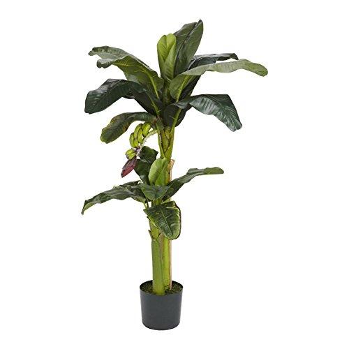 Banana Silk Tree With Bananas - 5 Feet and 3 Feet Tall (Silk 3' Banana Tree)