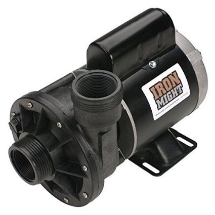 Waterway Plastics 806105066381 Iron Might 1/8HP 230V Spa (Waterway Spa Pump)