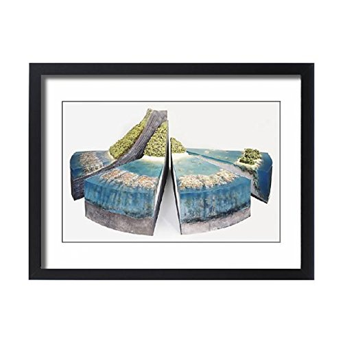 Earth Cross Section Model (Framed 24x18 Print of Three-dimensional segmented model of coral reef and surrounding (13557859))