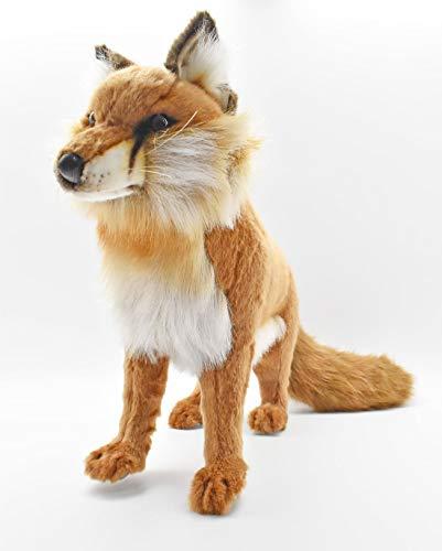Red Fox Standing 17