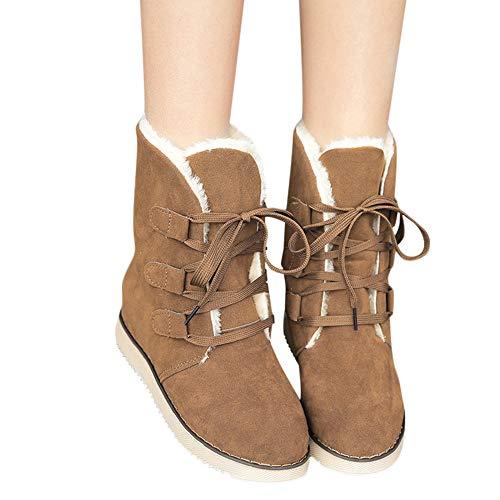❤ Botas de Nieve Mujer de Felpa, Damas de Mujer Zapatos de Invierno con Cordones Botas Calientes Botas de Nieve botín Corto Absolute: Amazon.es: Ropa y ...