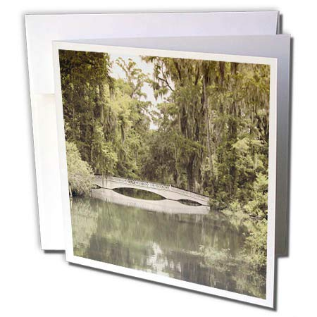 - 3dRose Stamp City - Architecture - Photograph of White Bridge at Magnolia Plantation and Gardens. - 1 Greeting Card with Envelope (gc_289749_5)