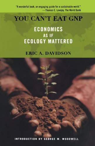 You Can't Eat GNP: Economics as if Ecology Mattered (A Merloyd Lawrence Book)