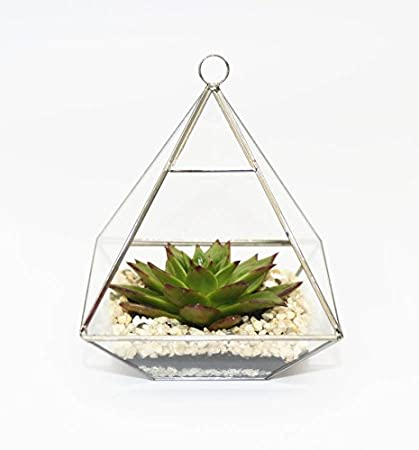 Glass Terrarium, Succulent Planter, Candle Holder, Geometric Shape, Gold  Colored Frame Great Pictures