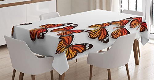 Ambesonne Butterflies Tablecloth, Monarch Butterfly Flying Frame Insect Exotic Weather, Dining Room Kitchen Rectangular Table Cover, 60