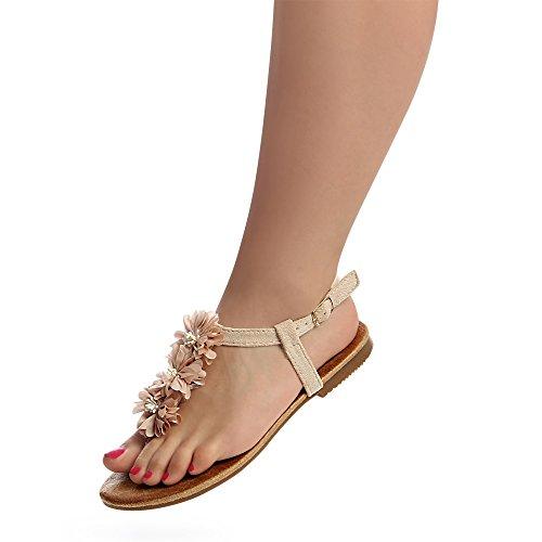 topschuhe24 Femmes topschuhe24 Femmes Beige Sandales Beige Sandalettes Sandales Sandalettes nSWdqHg