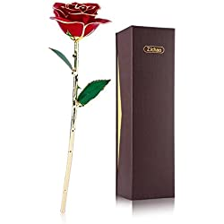 24k Gold Trim Real Red Rose