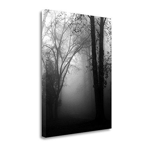 Tangletown Fine-grained Art ICB2809D-2228c November Fog by Nicholas Bell Wall Art