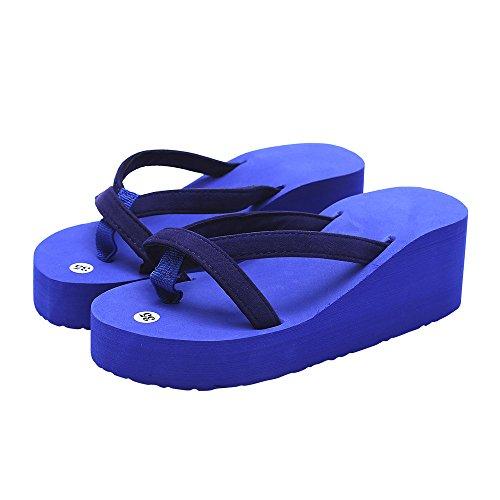 Herfst Mode Dames Zomer Slippers Slippers Strand Sleehak Schoenen Met Zolen Met Dikke Hak (us: 10, Zwart) Blauw