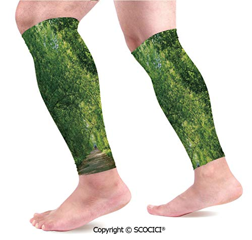 Flexible Breathable Comfortable Leg Skin Protector Sleeve Fresh Forest Canopy Trees Over Footpath in an Old Park People Walking Natural Scenery Calf Compression Sleeve
