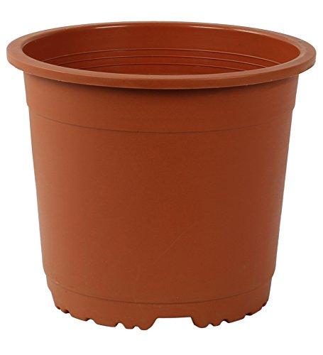 CAPPL Plastic Round Pot,12 Pots,10 Inch(Terracotta) product image