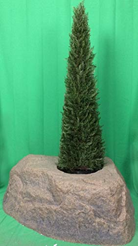Artificial-UV-Rated-Outdoor-4-Tower-Cypress-Topiary-Tree-Bundled-with-Rock-Planter-Cover-by-Silk-Tree-Warehouse