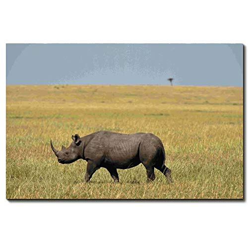 Animal Canvas Wall Art Brown Rhino Painting Pictures Modern Posters Prints Artwork Decor For Living Room Home House Wooden Framed Ready To Hang,20 * 30inch ()