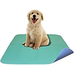 2 Pack - Premium Waterproof Reusable / Quilted Washable Large Dog / Puppy Training Travel Pee Pads - Size 34 x 36
