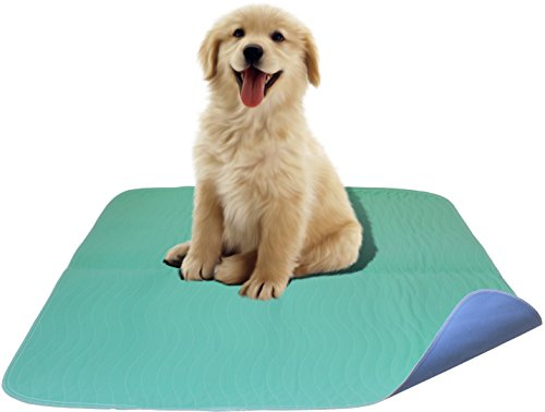 2 Pack - Premium Waterproof Reusable / Quilted Washable Large Dog / Puppy Training Travel Pee Pads - Size 34 x 36 - Pee Pads Reusable