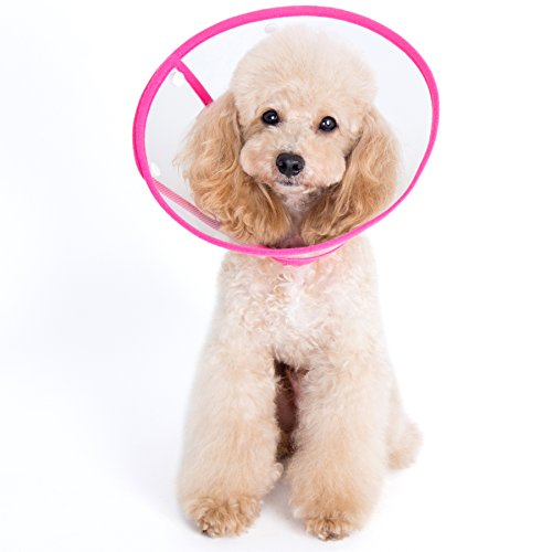 Alfie Pet Petoga Couture Recovery product image